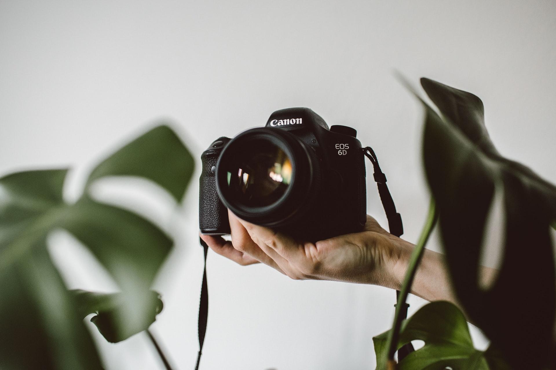 Utilisation de photos pour votre site internet